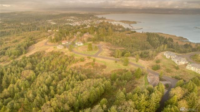 3003 Lighthouse Keepers Rd, Ilwaco, WA 98624 (#1125617) :: Ben Kinney Real Estate Team
