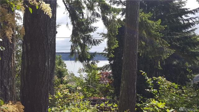 166 E Treasure Island   (Lot #166) Dr, Allyn, WA 98524 (#1125821) :: Ben Kinney Real Estate Team