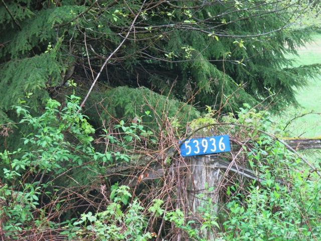 53936 Rockport Cascade Rd, Rockport, WA 98283 (#1125990) :: Ben Kinney Real Estate Team