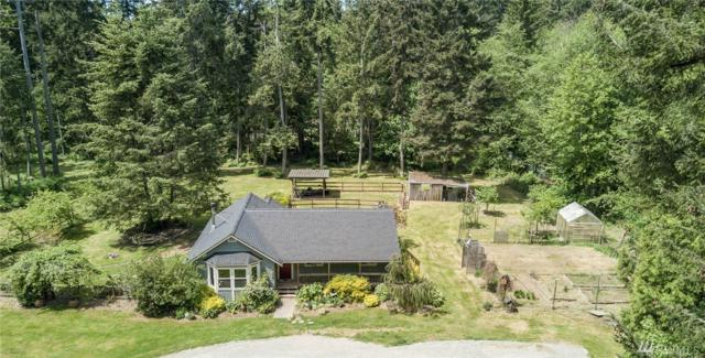 28107 133rd Ave SW, Vashon, WA 98070 (#1126750) :: Ben Kinney Real Estate Team