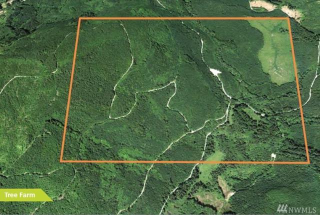0-XXXX Blue Mountain Rd., Acme, WA 98244 (#1128438) :: Ben Kinney Real Estate Team