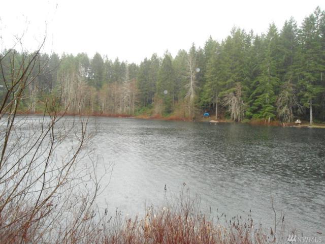 0 Collins Lake Dr, Belfair, WA 98588 (#1128489) :: Ben Kinney Real Estate Team