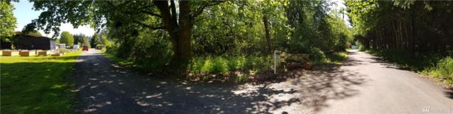 0-Lot 1 F St, Ryderwood, WA 98593 (#1128834) :: Ben Kinney Real Estate Team