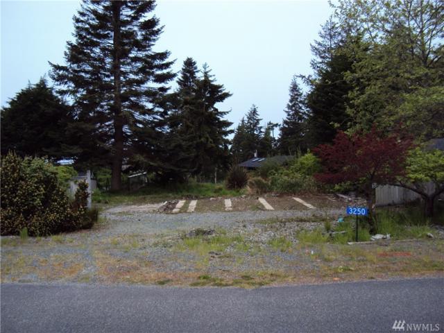 3250 Mardell Dr, Langley, WA 98260 (#1129067) :: Ben Kinney Real Estate Team