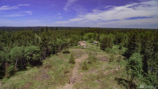 0 Russian Hill Tpn 21625330200 Lane SE, Rainier, WA 98576 (#1129412) :: Ben Kinney Real Estate Team