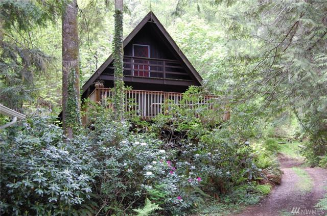 181 N Paradise Dr, Lilliwaup, WA 98555 (#1129509) :: Ben Kinney Real Estate Team