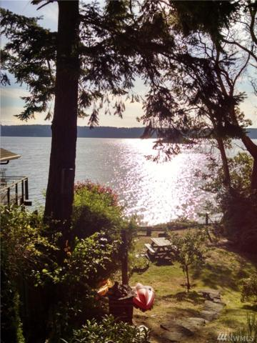 18152 Capet Zalsiluce Lane, La Conner, WA 98257 (#1129748) :: Ben Kinney Real Estate Team