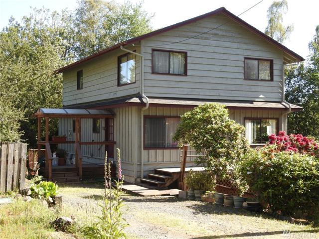 2903 271st St, Nahcotta, WA 98637 (#1129933) :: Ben Kinney Real Estate Team