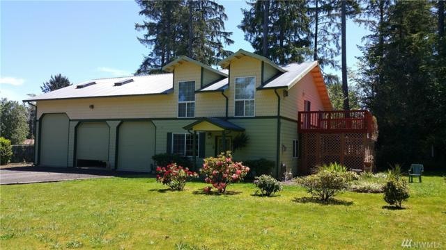 2800 272nd St, Ocean Park, WA 98637 (#1129945) :: Ben Kinney Real Estate Team
