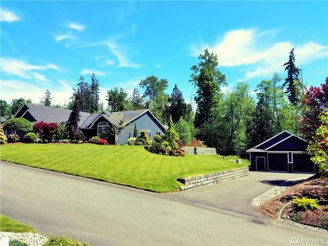 2622 259th St NW, Stanwood, WA 98292 (#1130458) :: Ben Kinney Real Estate Team