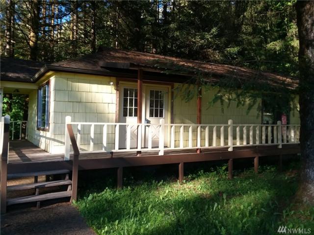 360 Hwy 7, Morton, WA 98356 (#1130867) :: Ben Kinney Real Estate Team