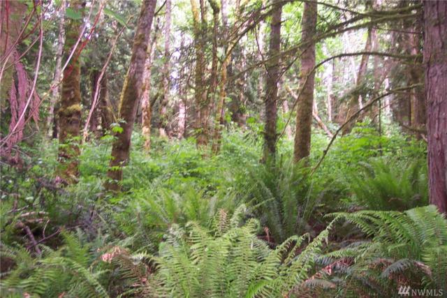 0-Lot C Highway 3 NE, Poulsbo, WA 98370 (#1130918) :: Homes on the Sound