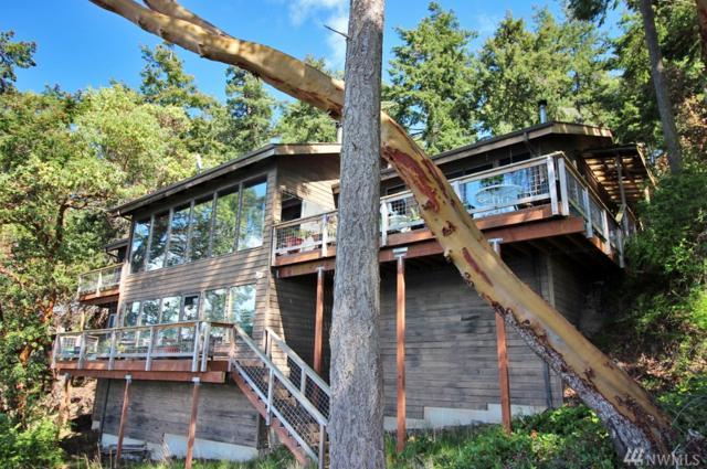 429 Madrona Dr, San Juan Island, WA 98250 (#1130957) :: Ben Kinney Real Estate Team