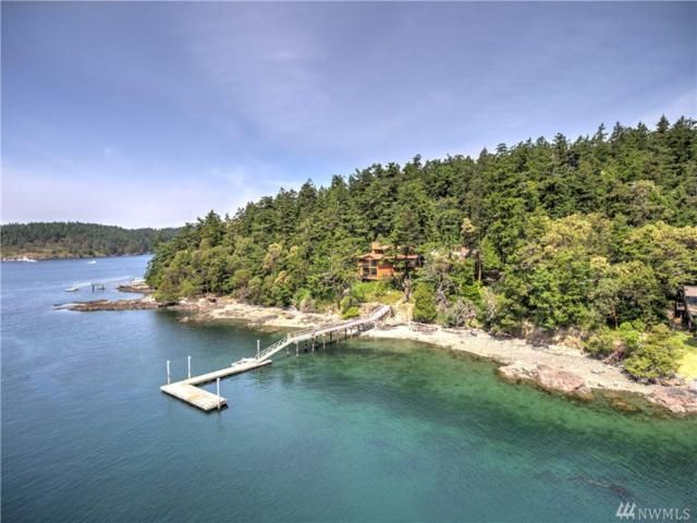 55-56 Brown Island, Friday Harbor, WA 98250 (#1131205) :: Ben Kinney Real Estate Team