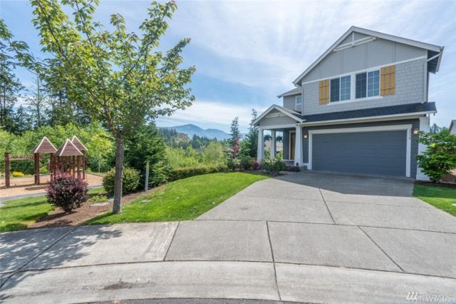 5510 Razor Peak Dr, Mount Vernon, WA 98273 (#1131307) :: Ben Kinney Real Estate Team