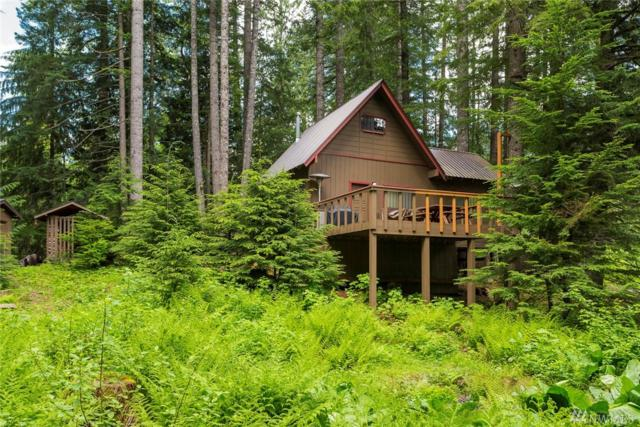 87611 NE Stevens Pass Hwy, Skykomish, WA 98288 (#1131660) :: Ben Kinney Real Estate Team