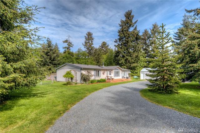 826 Hazzle Ct, Coupeville, WA 98239 (#1131767) :: Ben Kinney Real Estate Team