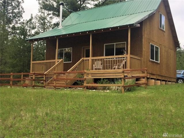 71 Broken Arrow Trail, Riverside, WA 98849 (#1132094) :: Ben Kinney Real Estate Team