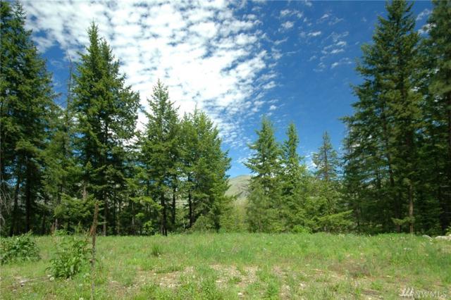 401 Wolf Creek Rd, Winthrop, WA 98862 (#1132152) :: Ben Kinney Real Estate Team