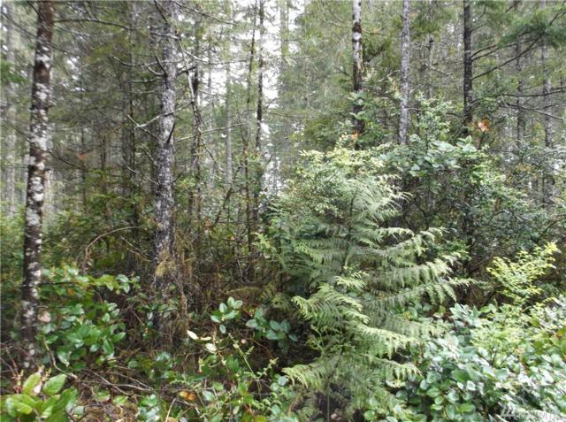 1111-xxx Timber Tides Dr., Union, WA 98592 (#1132291) :: Ben Kinney Real Estate Team