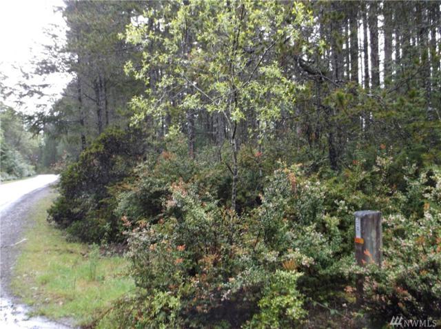 111-xxx Timber Tides Dr, Union, WA 98592 (#1132353) :: Ben Kinney Real Estate Team