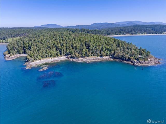 821 Squaw Bay Rd, Shaw Island, WA 98286 (#1132868) :: Ben Kinney Real Estate Team