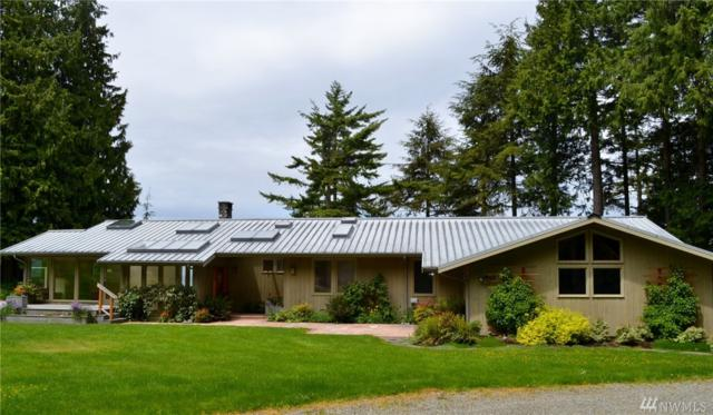 1629 Place Rd, Port Angeles, WA 98363 (#1132904) :: Ben Kinney Real Estate Team