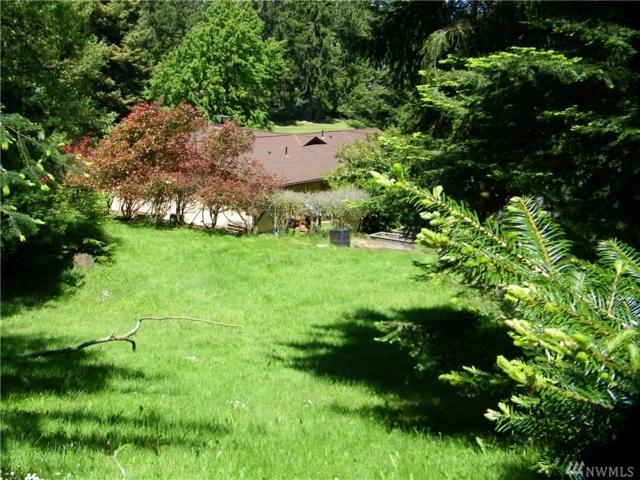 9999 Hogans Vista, Sequim, WA 98382 (#1132933) :: Ben Kinney Real Estate Team