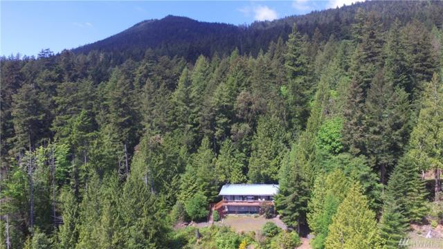 474 Never Give Up Rd, Brinnon, WA 98320 (#1133169) :: Ben Kinney Real Estate Team