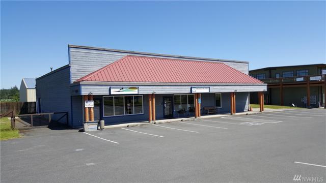 689 Airport Center Road, Friday Harbor, WA 98250 (#1133492) :: Ben Kinney Real Estate Team