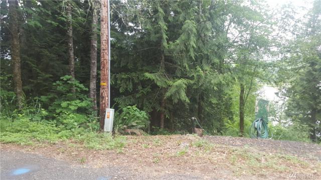 260 Panarama Dr, Shelton, WA 98584 (#1134297) :: Ben Kinney Real Estate Team