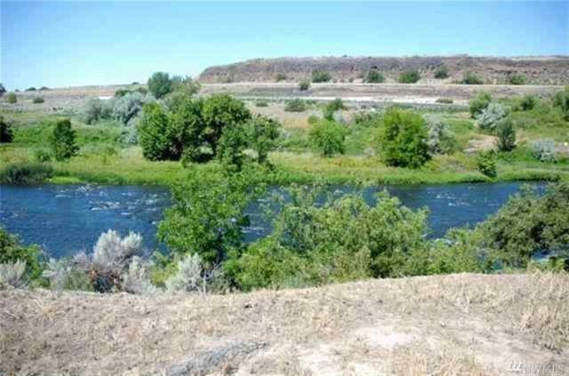 0 Salmon Run Prnw, Prosser, WA 99350 (#1134309) :: Ben Kinney Real Estate Team