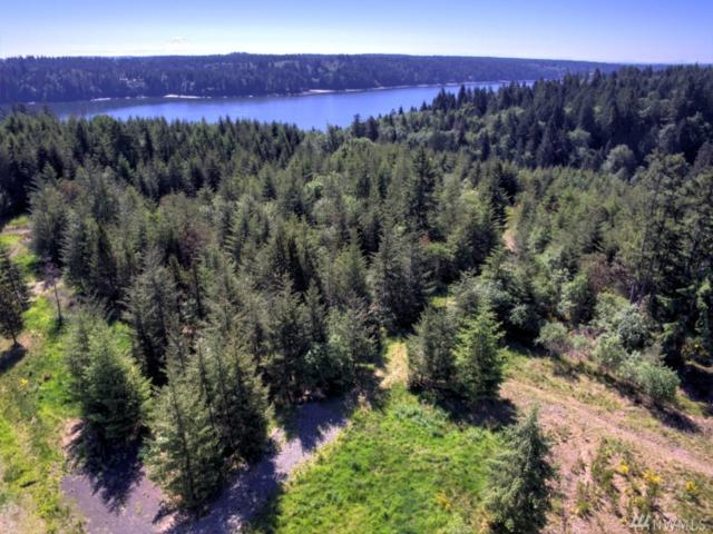 10-Lot 1 Cottonwood Dr, Grapeview, WA 98546 (#1134375) :: Ben Kinney Real Estate Team