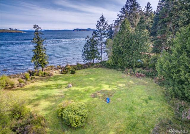 71 Lonesome Cove Rd, Friday Harbor, WA 98250 (#1134867) :: Ben Kinney Real Estate Team