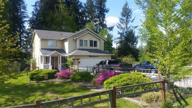 35608 94th Av Ct S, McKenna, WA 98558 (#1135055) :: Ben Kinney Real Estate Team