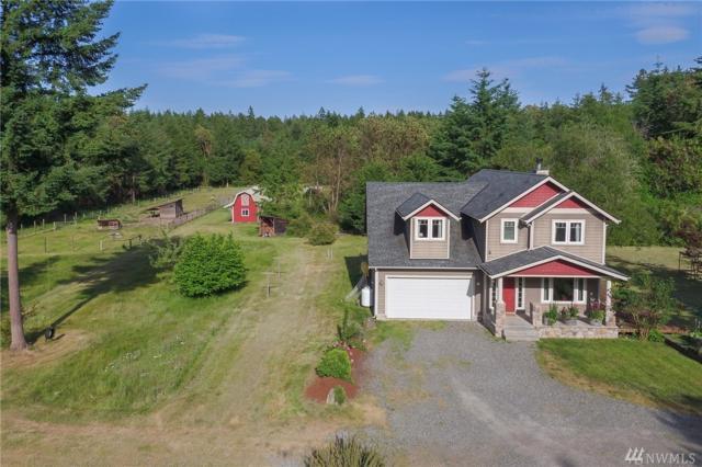 8807 Otso Point Rd, Anderson Island, WA 98303 (#1135669) :: Ben Kinney Real Estate Team