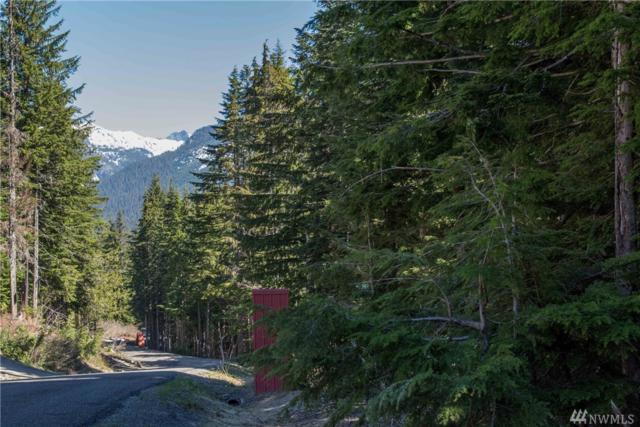 1-XX Innsbruck Dr Lot80, Snoqualmie Pass, WA 98068 (#1135787) :: Ben Kinney Real Estate Team
