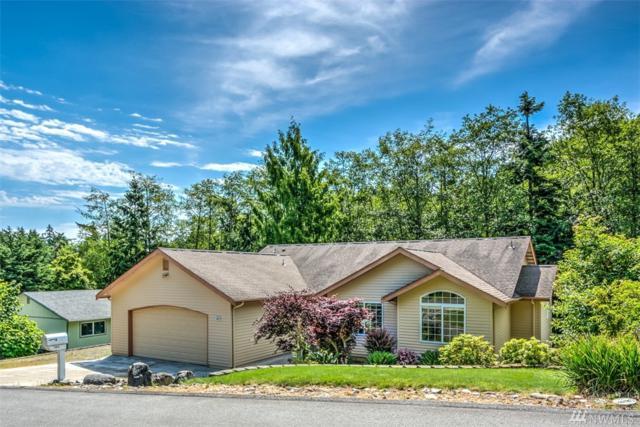 503 Colville Wy, La Conner, WA 98257 (#1135894) :: Ben Kinney Real Estate Team
