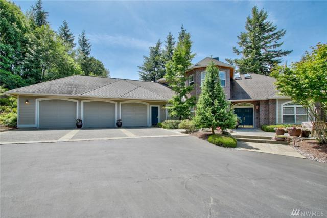18419 Peregrine Lane, Mount Vernon, WA 98274 (#1135956) :: Ben Kinney Real Estate Team