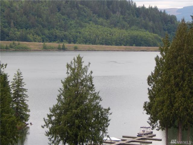 0 Lakeside Dr, Mossyrock, WA 98564 (#1136325) :: Ben Kinney Real Estate Team