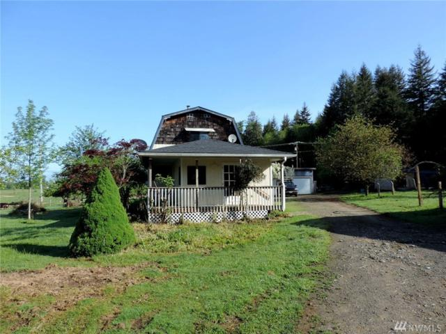 192 W Elma Gate Rd, Oakville, WA 98568 (#1136353) :: Ben Kinney Real Estate Team