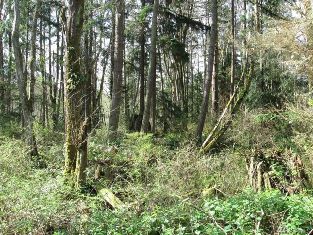 4049 Eagle Ridge Dr, Camano Island, WA 98282 (#1136904) :: Ben Kinney Real Estate Team