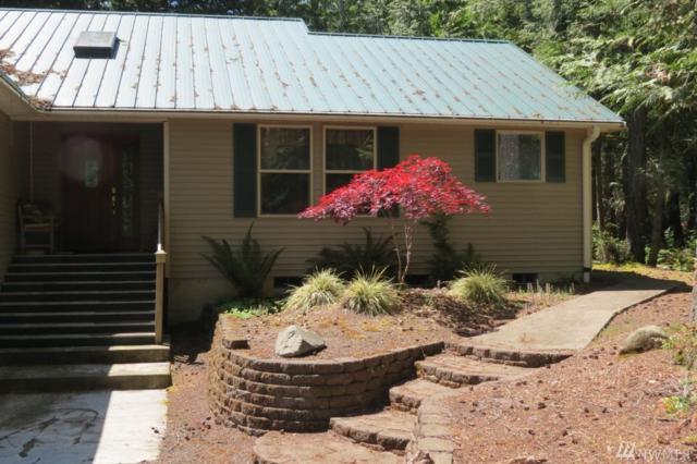 163 E Nantucket Rd, Shelton, WA 98584 (#1137351) :: Ben Kinney Real Estate Team