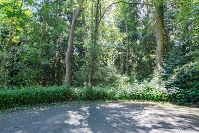451-Lot Creekwood Place, Port Townsend, WA 98368 (#1137358) :: Ben Kinney Real Estate Team