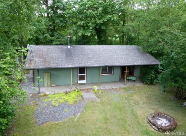 9579 Delta Line Rd, Blaine, WA 98230 (#1137471) :: Ben Kinney Real Estate Team