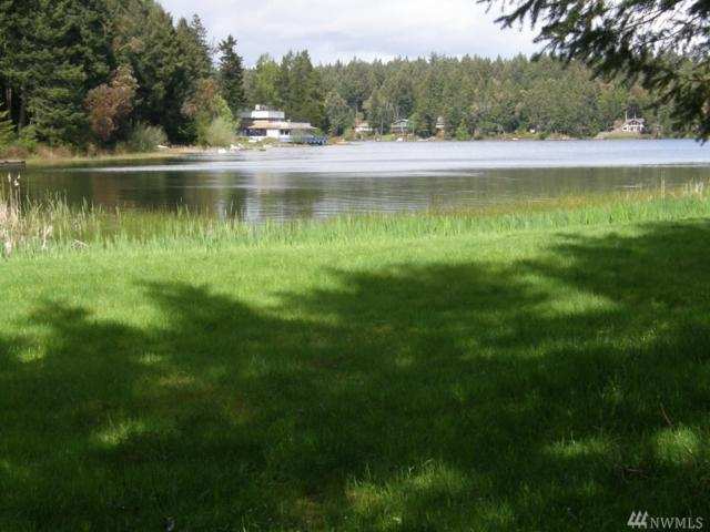 11120 Cole Place, Anderson Island, WA 98303 (#1137597) :: Ben Kinney Real Estate Team
