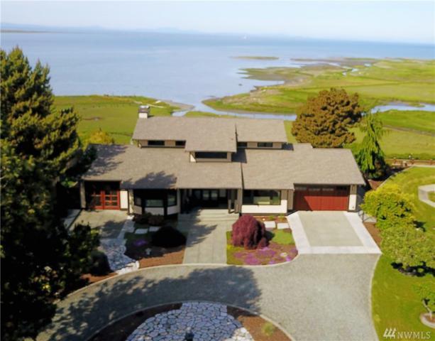 452 Twin View Dr, Sequim, WA 98382 (#1137701) :: Ben Kinney Real Estate Team