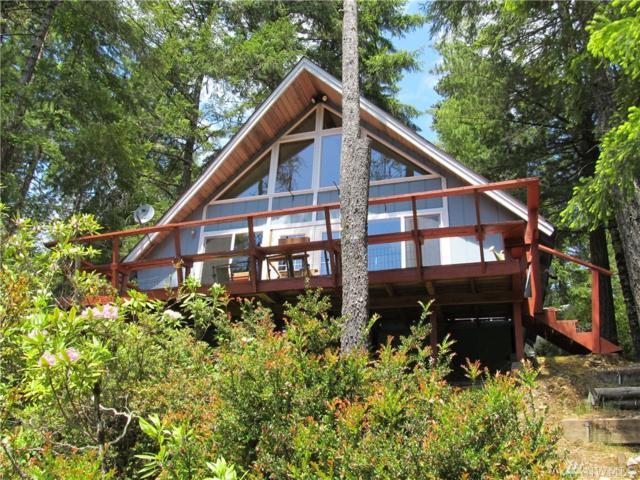 1001 NE Collins Lake Dr, Tahuya, WA 98588 (#1137861) :: Ben Kinney Real Estate Team