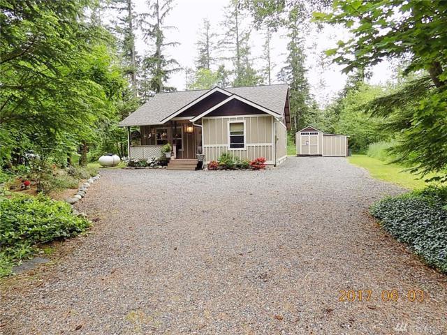 6236 Bellwood Dr, Maple Falls, WA 98266 (#1137956) :: Ben Kinney Real Estate Team