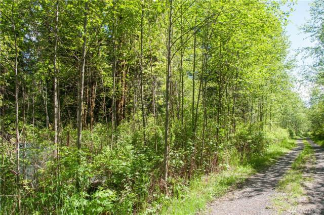 359-XX NE Moss Lake Rd, Carnation, WA 98014 (#1138453) :: Ben Kinney Real Estate Team